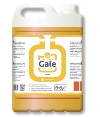GALE 5LT INDUQUIM