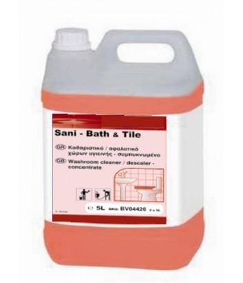 DI SANI BATH & TILE 5LT DIVERSEY