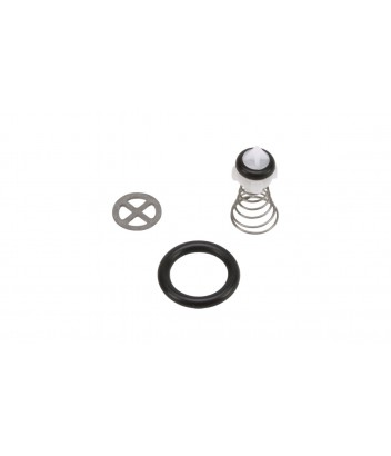 127440082  NON RETURN VALVE KIT NILFISK